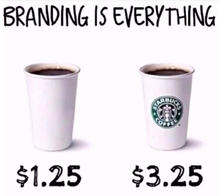 Branding Basics for Business Success